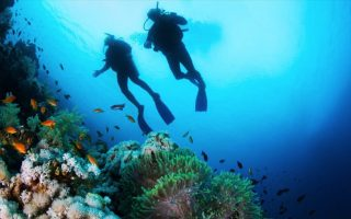 master-divers-emerges-again-at-posidonia