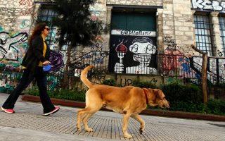 pet-awareness-event-athens-november-25