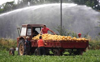 oecd-report-says-price-of-water-must-reflect-scarcity-in-greece