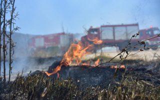 arson-suspect-arrested-in-florina