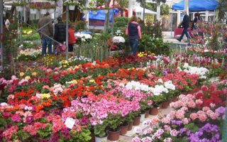 flower-show-athens-to-may-19