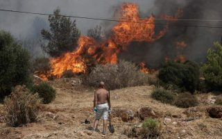 expert-committee-report-on-wildfires-provokes-criticism