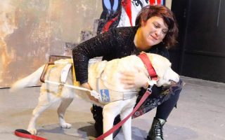 seeing-eye-dogs-much-more-than-just-a-guide-for-the-blind
