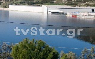 state-of-emergency-declared-in-halkida-due-to-floods