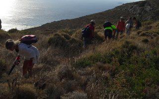 volunteer-hiking-team-clears-island-walking-trails