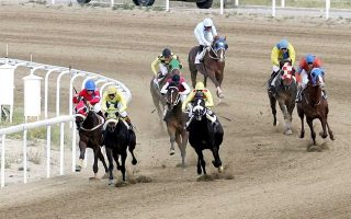horse-races-return-to-action-this-sunday-aiming-at-family-days
