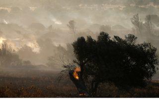 firefighters-battle-blaze-in-eastern-attica