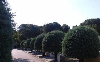 kifissia-cemetery-listed-among-europe-amp-8217-s-most-significant
