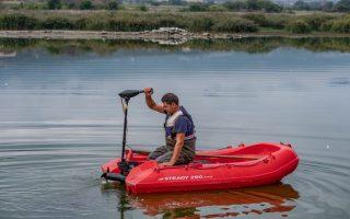experts-monitoring-situation-at-lake-koroneia