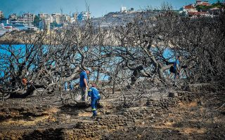 lawsuit-by-mati-wildfire-survivor-reaches-parliament