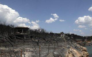 ahepa-announces-post-fire-aid-program