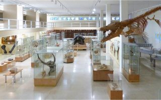 athens-university-opening-its-museums-to-the-public