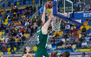 panathinaikos-builds-on-its-momentum-as-reds-lose-again