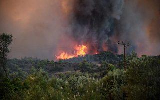 tourists-evacuated-as-fire-nears-zakynthos-resort