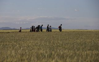 spain-preparing-to-receive-its-first-refugees-from-greece