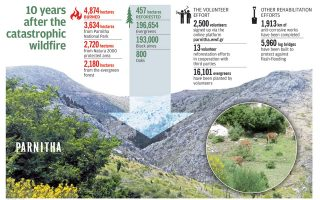a-decade-of-recovery-for-mount-parnitha