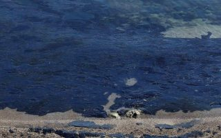 fresh-measures-adopted-to-protect-marine-environment