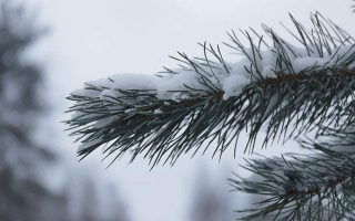 cold-front-brings-end-to-unseasonably-mild-weather