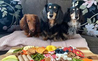 dogs-can-have-a-little-charcuterie-as-a-treat
