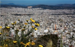 athens-projects-to-boost-house-rates