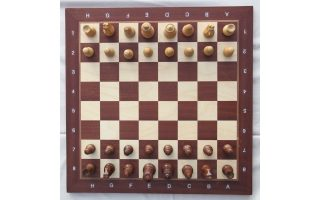 introduction-to-chess-may-9