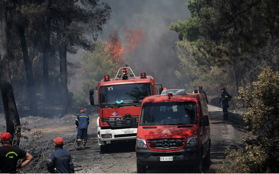 Fire fighters are seen operating in the village of Alepohori, in Corinthia. [Yiannis Liakos/Intime News]