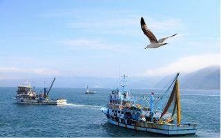 turkish-fishing-boats-enter-greek-waters-south-of-gavdos