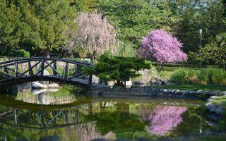 naoussa-park-listed-as-historic-garden-by-european-body
