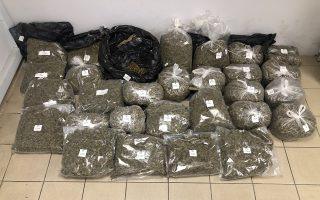 cannabis-stash-found-in-thessaloniki-forest