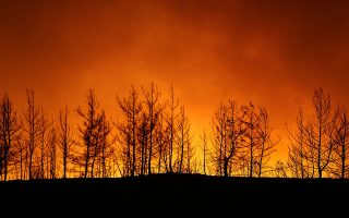 dendias-sends-condolences-offers-assistance-as-4-die-in-turkish-wildfires