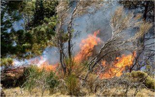 fires-in-varnavas-elefsina-in-attica-house-burns-down-in-halkidiki