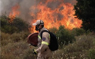 samos-wildfire-largely-contained