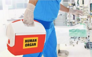 new-study-maps-overhaul-of-organ-transplant-system
