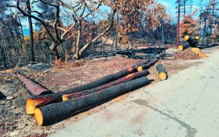 after-fires-anti-flood-works-expedited