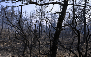 conditions-keep-likelihood-of-fires-high