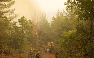massive-wildfire-on-greek-island-of-evia-devours-forests-for-eighth-day