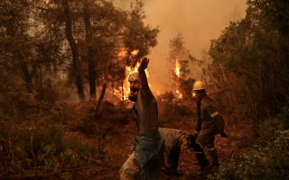 pm-issues-apology-over-weaknesses-in-battling-wildfires