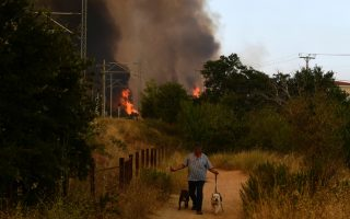 hundreds-flee-homes-as-heatwave-fuels-greek-wildfire