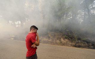 evia-residents-flee-wildfire-by-sea-eu-sends-help