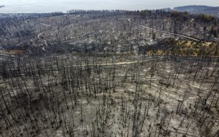 increase-in-burnt-areas-compared-to-2008-20-average-comes-to-500