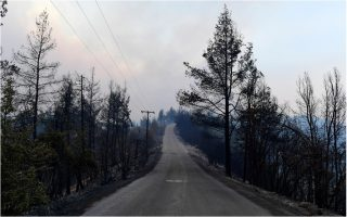 cabinet-to-announce-relief-measures-fore-fire-victims