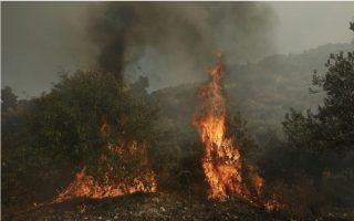 fire-breaks-out-on-mount-athos