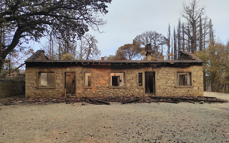 fire-destroys-at-least-two-containers-at-tatoi-former-royal-estate1
