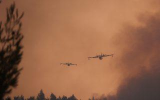mediterranean-has-become-a-wildfire-hotspot-eu-scientists-say