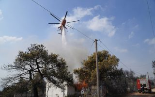 wildfire-burning-out-of-control-through-pine-forest-for-4th-day