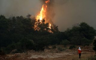 greek-wildfire-burns-through-pine-forest-for-4th-day