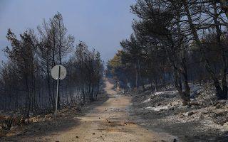 hundreds-of-firefighters-battling-flames