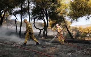 firefighters-battle-wildfire-at-resort-near-athens