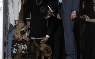 top-dog-pm-s-pet-interrupts-news-conference