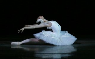 black-swan-athens-october-8
